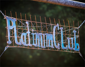 Parookaville Platinum Club